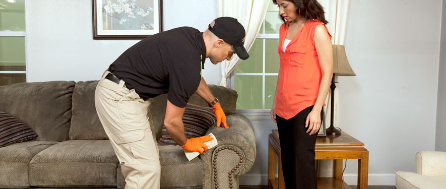 Parkersburg, WV carpet upholstery cleaning